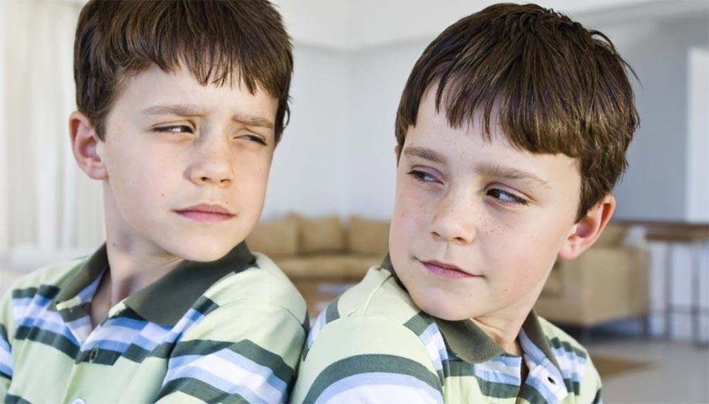 Необычные истории о близнецах