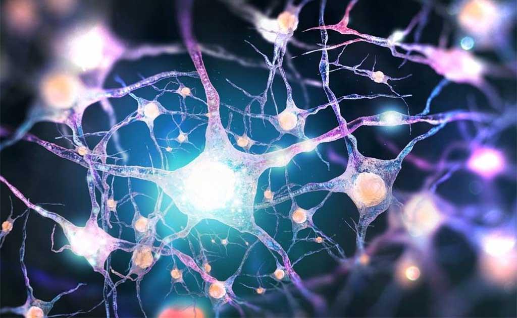 Квантовая механика сознания