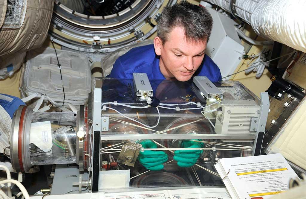 Международная космическая станция — история, устройство, факты