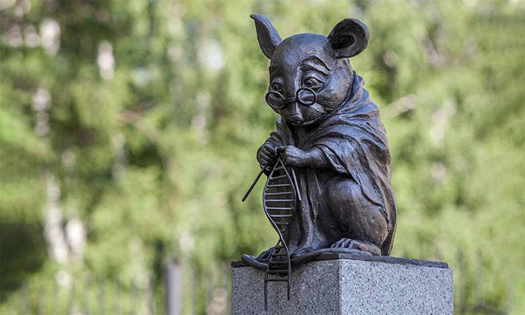 Лабораторные мыши на службе у человека
