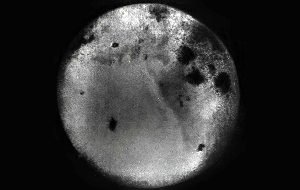 Знакомая незнакомка – обратная сторона Луны